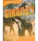 Giraffen - Dieren leven