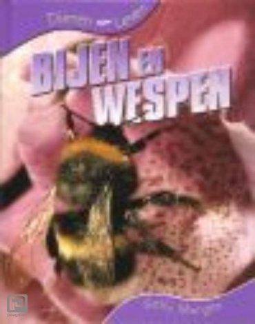 Bijen en wespen - Dieren leven