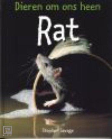 Rat - Dieren om ons heen