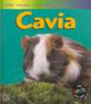 Cavia - Het leven van een...