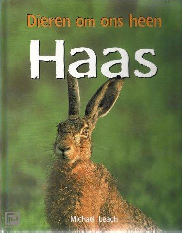Haas - Dieren om ons heen
