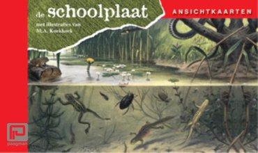 Ansichtkaarten, de Schoolplaat / In Ons Land