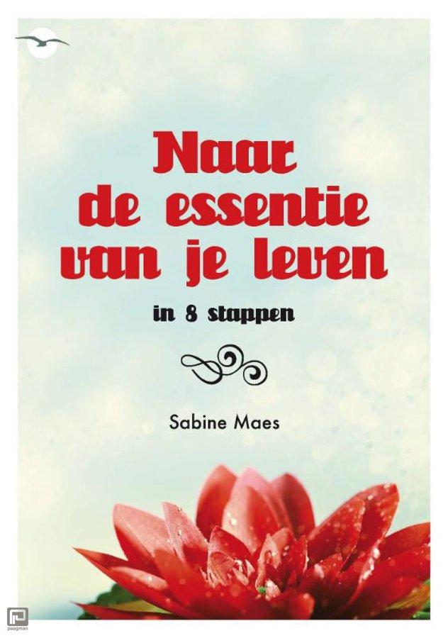 Naar De Essentie Van Je Leven Sabine Maes Isbn 9789057204494