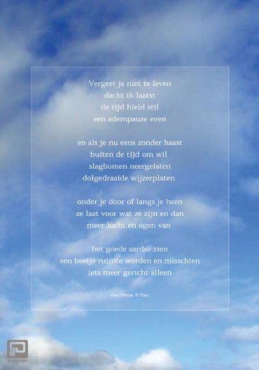 Raamgedicht Plint Hermis 'Vergeet je niet te leven' incl. set zuignapjes / 2001/01C1
