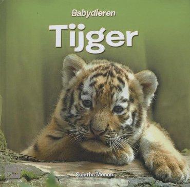 Tijger - Babydieren