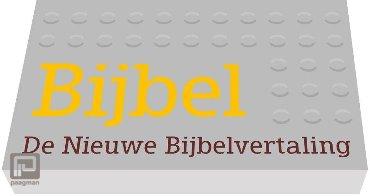 Bijbel : De nieuwe Bijbelvertaling - Dwarsligger