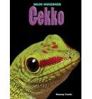 Gekko - Mijn Huisdier