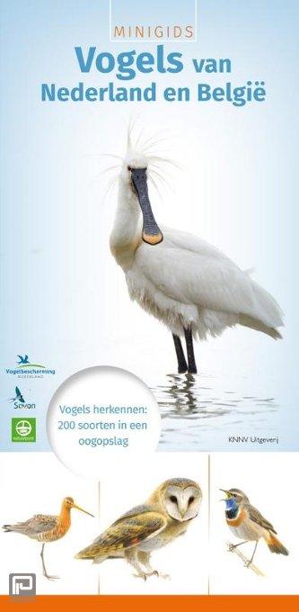 Minigids vogels van Nederland en België - Minigids