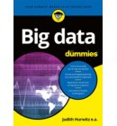 Big data voor Dummies - Voor Dummies