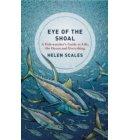 Eye of the shoal