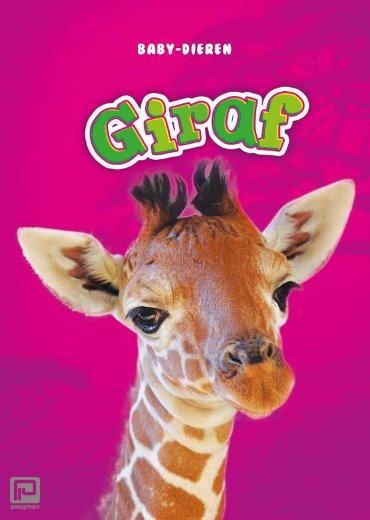 Giraf - Baby-dieren