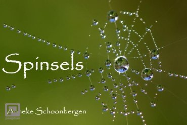 Spinsels