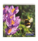 Natuurmonumenten maandkalender 2020