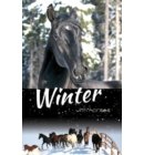 Winter with Horses - White Cloud Station