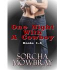 One Night With A Cowboy (Books 1-4) - One Night With A Cowboy