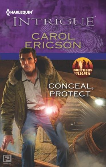 Conceal, Protect - Brothers in Arms: Fully Engaged